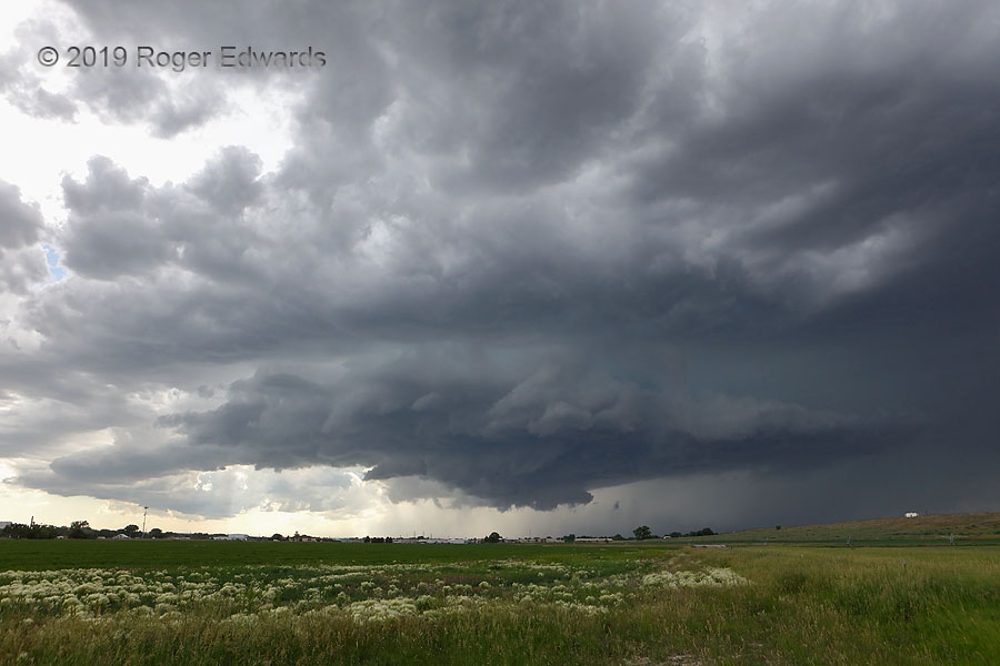 Turning over Torrington (Supercell & Wildflowers)