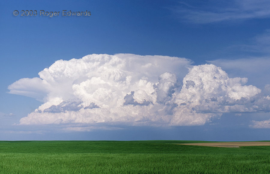 Convection on the Prairie (young thunderstorm)