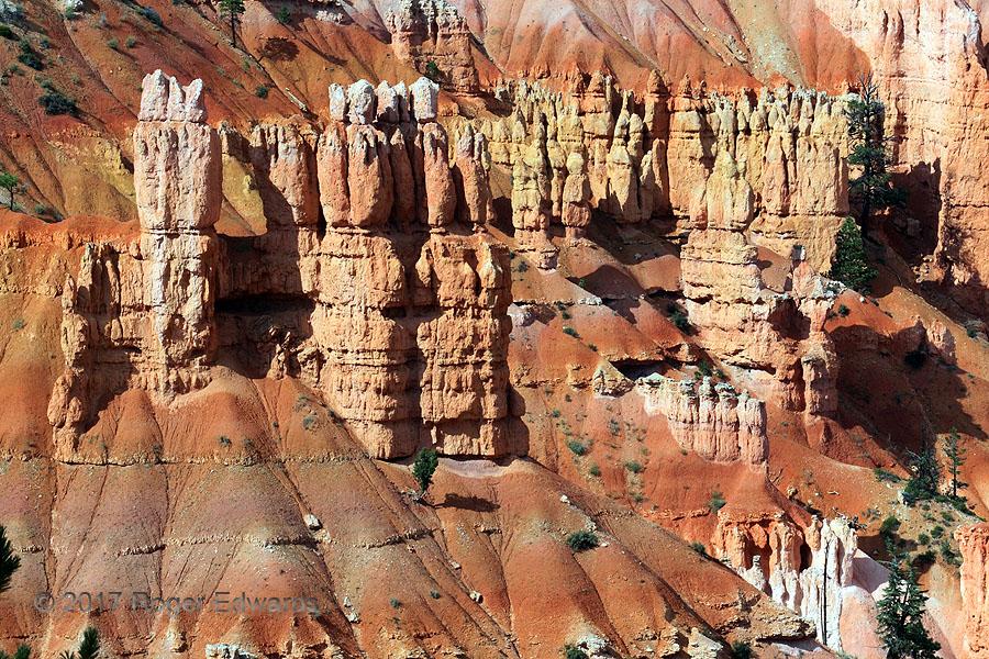 Bryce Vista (Bryce Canyon Hoodoos)